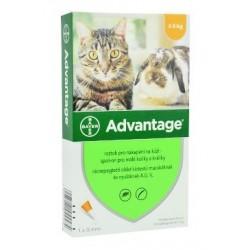 Advantage 40 10% 1x0,4ml...